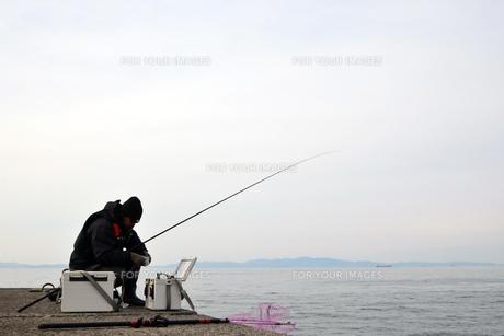 和歌山湾の釣り人の写真素材 [FYI01168462]