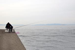 和歌山湾の釣り人の写真素材 [FYI01168463]