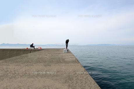 和歌山湾の釣り人の写真素材 [FYI01168464]