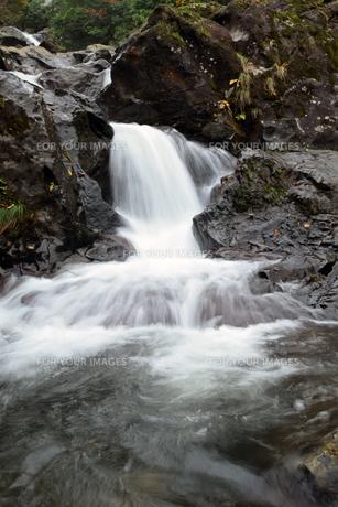 京都大江山の千丈ヶ滝の写真素材 [FYI01168471]