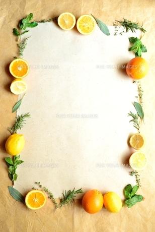 オレンジとハーブのフレームの写真素材 [FYI01168577]