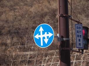 斜め前以外はどの方向に行っても良いことを示す道路標識の写真素材 [FYI01168694]
