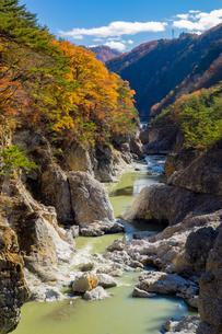 栃木県日光市、鬼怒川上流の龍王峡。むささび橋から下流の景観の写真素材 [FYI01168903]