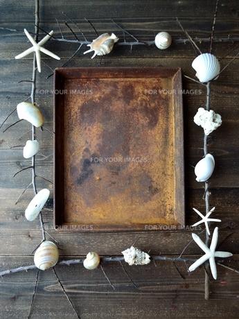 白い貝がらと錆びたフレームの写真素材 [FYI01168998]
