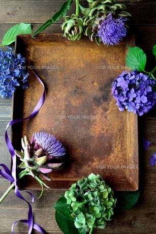 紫陽花とアーティーチョークの花と錆びたトレーの写真素材 [FYI01169026]