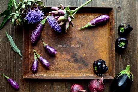 アーティーチョークの花と紫色の夏野菜と錆びたトレーの写真素材 [FYI01169038]
