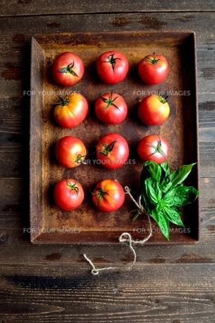 錆びたトレーとトマトとバジルリーフの写真素材 [FYI01169051]