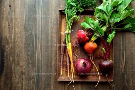 カラフルな根菜と錆びたトレーの写真素材 [FYI01169065]