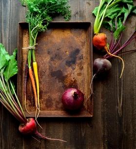 カラフルな根菜と錆びたトレーの写真素材 [FYI01169068]