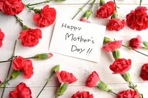 赤いカーネーションと母の日のメッセージカード 白木材背景の写真素材 [FYI01169916]
