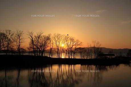 黄昏時の琵琶湖畔の写真素材 [FYI01170133]