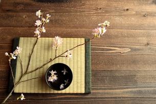 桜の枝と畳と黒い小鉢の写真素材 [FYI01170575]