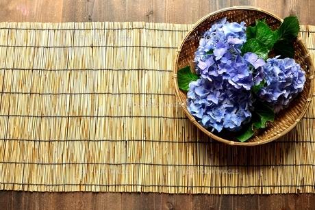 ざるに入れた青色の紫陽花とすだれ の写真素材 [FYI01170621]