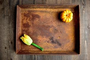 錆びたトレーとズッキーニの花と南瓜の写真素材 [FYI01170644]
