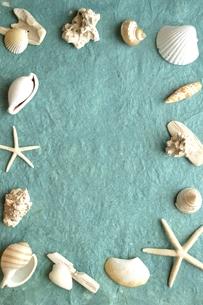 白い貝がら フレーム 水色の紙背景の写真素材 [FYI01170937]