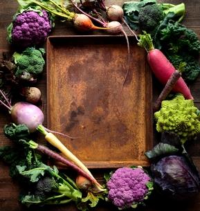 紫色の野菜と緑の野菜と錆びたトレー フレームの写真素材 [FYI01170959]