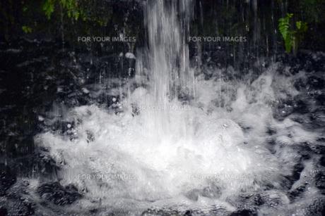 小さな池の滝の写真素材 [FYI01171044]
