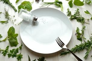 白皿とフォークとソルト グリーンハーブ背景の写真素材 [FYI01171269]
