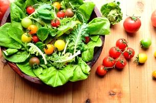 カラフルなトマトとグリーン野菜のサラダボウルの写真素材 [FYI01171357]