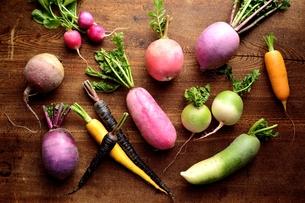 カラフルな根菜の写真素材 [FYI01171624]