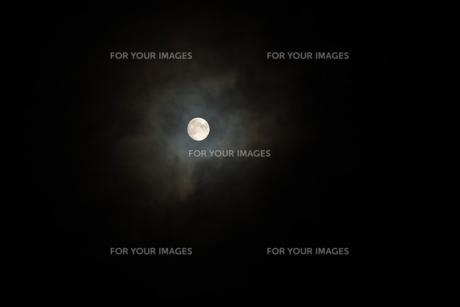 おぼろ月夜の写真素材 [FYI01171823]