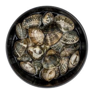 皿に入ったアサリの写真素材 [FYI01171835]