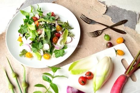 白皿に盛りつけたサラダと食材の写真素材 [FYI01171978]