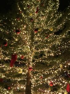 クリスマスツリー アップの写真素材 [FYI01172382]