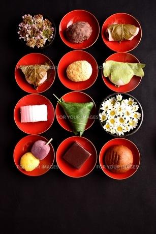 杯に盛り合わせた和菓子と小菊の写真素材 [FYI01172480]