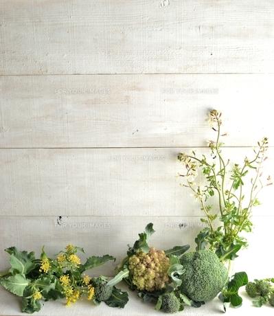 野菜とルッコラの花 白木材背景の写真素材 [FYI01172549]