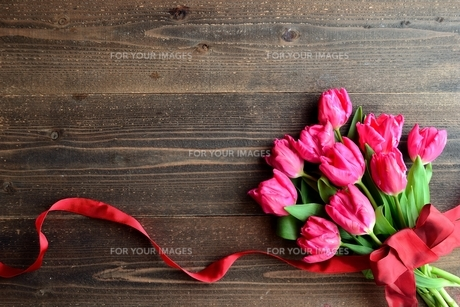 ピンク色のチューリップの花束 黒木材背景の写真素材 [FYI01173344]