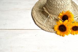 向日葵と麦わら帽子 白色木材背景の写真素材 [FYI01173509]