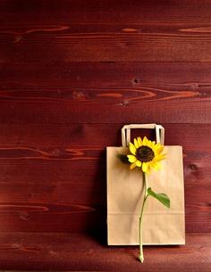 一輪の向日葵とクラフト紙の紙袋 茶色木材背景の写真素材 [FYI01173511]