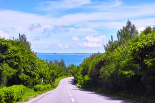 真夏の宮古島、伊良部島の海へ下る道の写真素材 [FYI01173793]