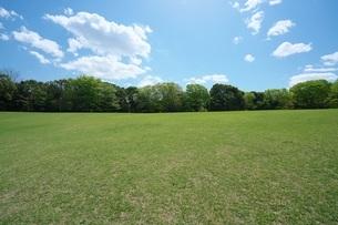 無人の春の公園の写真素材 [FYI01173908]