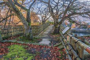 秋の福井城跡の風景の写真素材 [FYI01174887]