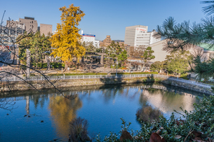 秋の福井城跡の風景の写真素材 [FYI01174924]