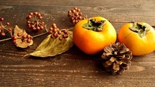 柿とまつぼっくりと落葉の写真素材 [FYI01175072]