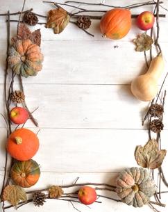 南瓜と林檎と落葉 フレーム 白木材背景の写真素材 [FYI01175118]