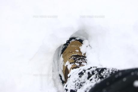 雪の中を進むの写真素材 [FYI01175236]
