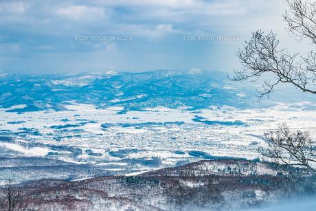 北海道倶知安町の冬景色の写真素材 [FYI01175666]