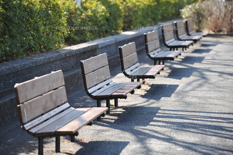 公園のベンチの写真素材 [FYI01175705]