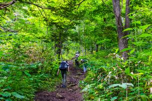 登山風景 北海道小樽市塩谷丸山の写真素材 [FYI01175844]