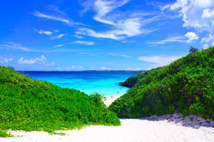 真夏の宮古島。砂山ビーチへ下りる砂の坂道の写真素材 [FYI01175926]