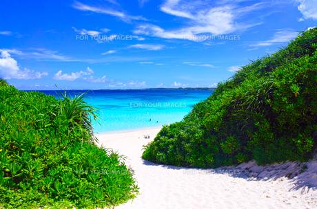 真夏の宮古島。砂山ビーチへ下りる砂の坂道の写真素材 [FYI01175927]