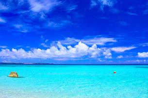 真夏の宮古島。砂山ビーチの前に広がる海の写真素材 [FYI01175934]