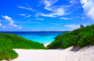 真夏の宮古島。砂山ビーチへ下りる砂の坂道の写真素材 [FYI01175940]