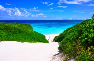 真夏の宮古島。砂山ビーチへ下りる砂の坂道の写真素材 [FYI01175941]