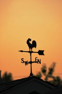風見鶏 夕焼け の写真素材 [FYI01176138]