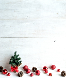 ミニクリスマスツリーとオーナメントとまつぼっくり 白木材背景 レッド系の写真素材 [FYI01176184]